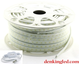 LED DÂY KINGLED LD-5050